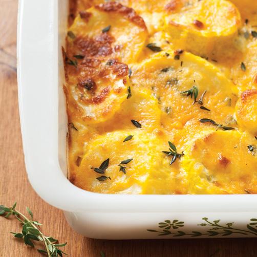 Herbed-Squash-Casserole-Recipe.jpg