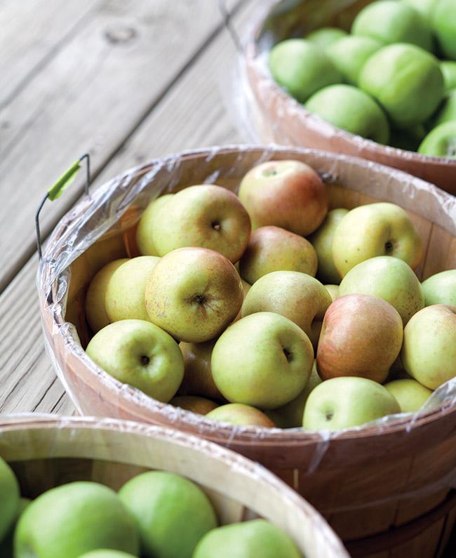 Bushel Apples