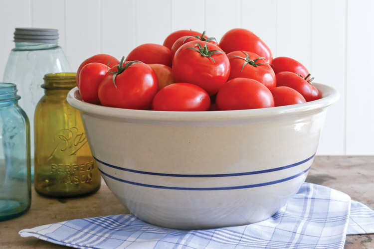 "How to ""Can-It-Forward"" and Preserve Summer Tomatoes"