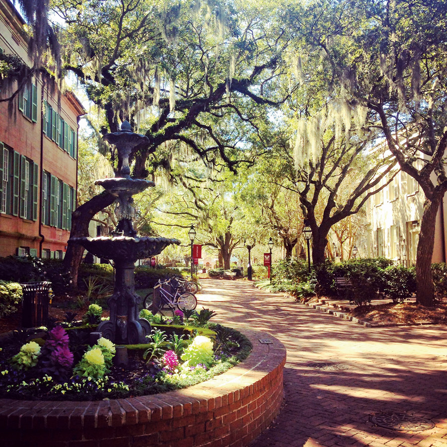 5 Great Sites To See In Charleston, South Carolina | Her Campus